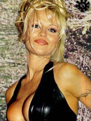 Pamela Anderson nude, naked, porn, movie, photo